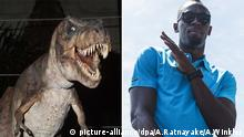 T. rex standing next to Usain Bolt