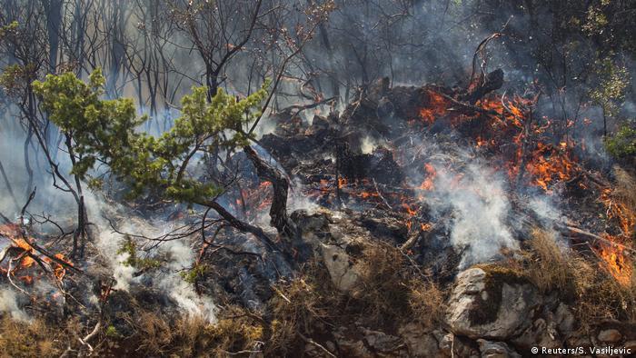Montenegro - Waldbrand