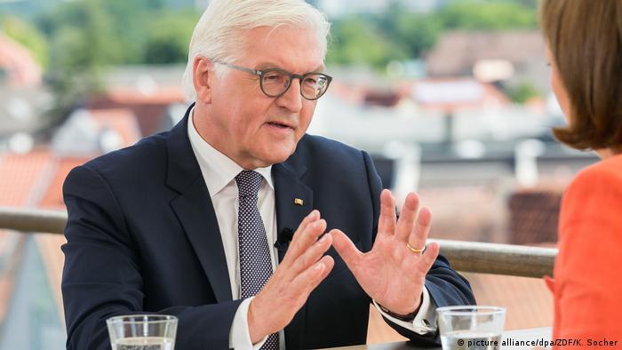 Deutschland | Sommerinterview mit Steinmeier (picture alliance/dpa/ZDF/K. Socher)