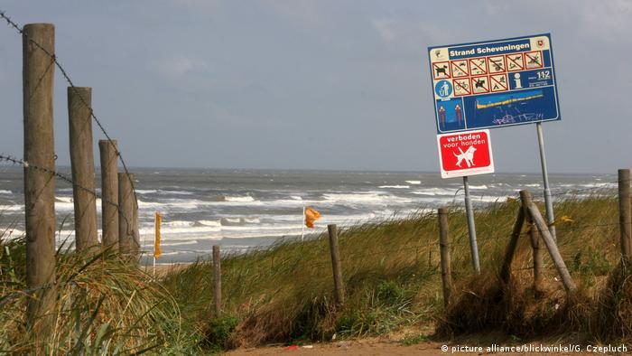 Dünen am Strand von Scheveningen an der Nordsee, beach in Scheveningen
