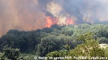 25.07.2017 A picture taken on July 25, 2017 shows a fire burning the forest in Ortale de Biguglia, near Biguglia, on the French Mediterranean island of Corsica. Hundreds of firefighters were battling blazes across southern France, with one inferno spreading across 900 hectares of forest and threatening homes on the island of Corsica, emergency services said. Residents were evacuated from homes at the edge of the town of Biguglia, on the island's northeastern coast. / AFP PHOTO / Pascal POCHARD-CASABIANCA (Photo credit should read PASCAL POCHARD-CASABIANCA/AFP/Getty Images)