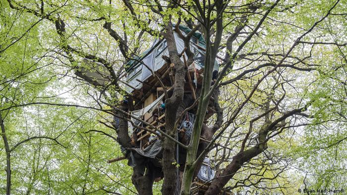Environmental activists occupy parts of the Hambach forest, Germany (Elian Hadj-Hamdi)