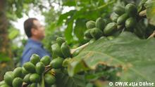 Teaser Globalideas – Costa Rica Kaffee – ohne Logo