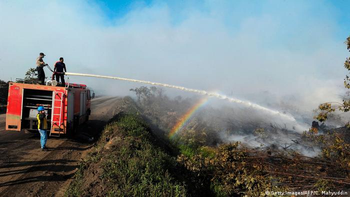 Indonesien Waldbrand im Provinz Aceh (Getty Images/AFP/C. Mahyuddin)