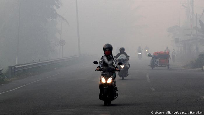 Indonesien Waldbrand im Provinz Aceh (picture-alliance/abaca/J. Hanafiah)