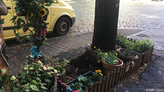 Deutschland Balkonbepflanzung und urban gardening in Berlin (DW/J. Collins)