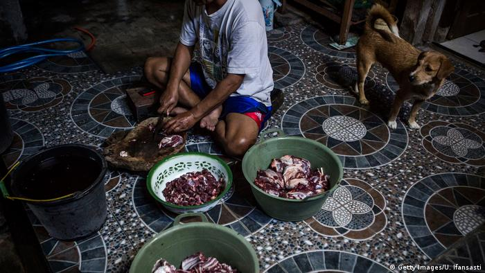 Indonesien Hundefleisch wird als Nahrung verwendet (Getty Images/U. Ifansasti)