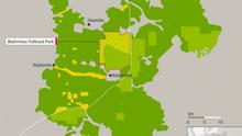 Karte Infografik Bialowieza Wald ENG