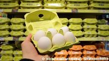 Deutschland Eier im Supermarkt