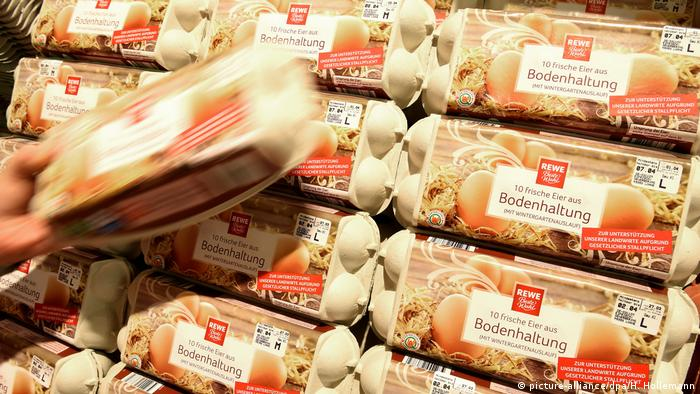 German eggs in the supermarket REWE (picture-alliance/dpa/H. Hollemann)