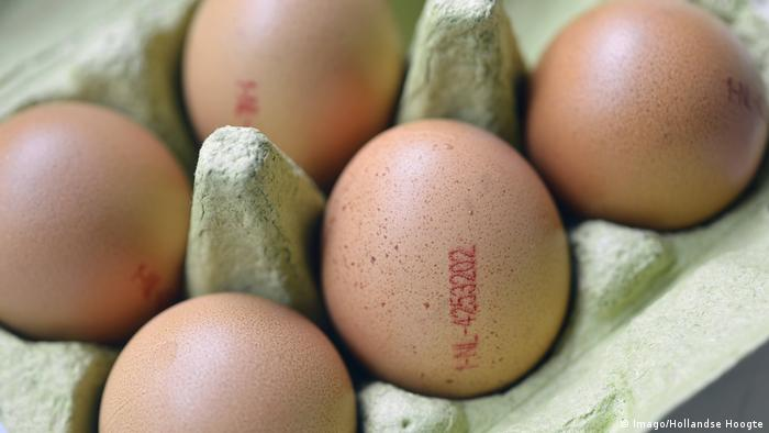 Eggs showing the production code NL