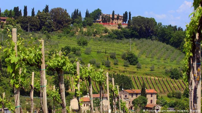 San Gimignano vineyards in Tuscany (Picture-alliance/Arco Images/J. Moreno)