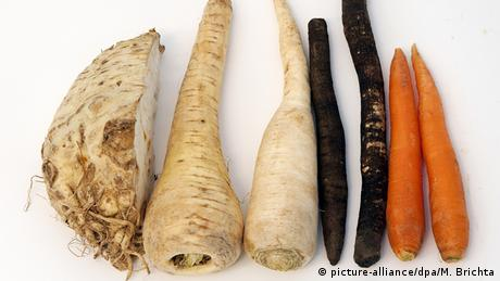 root vegetables (picture-alliance/dpa/M. Brichta)