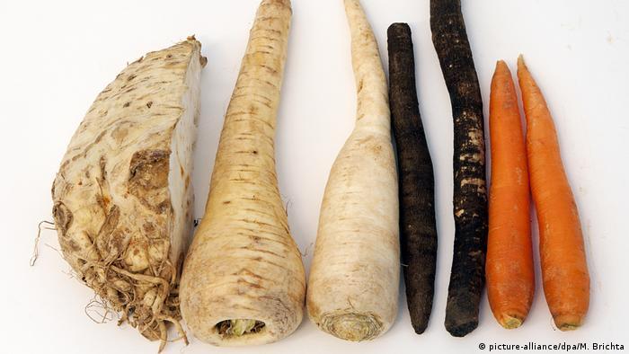 Овощи: пастернак, корень претрушки, морковь, сельдерей.