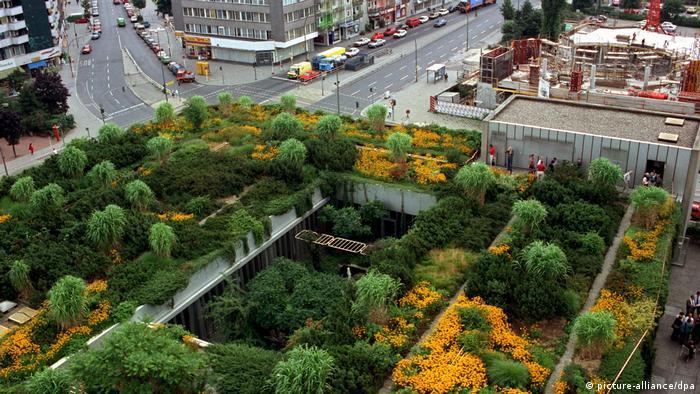 Roof gardens in Berlin Wedding