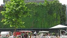 Avignon - Vertikaler Garten an der Markthalle