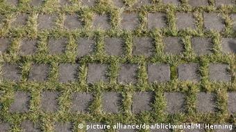 Γερμανικές πόλεις επιδοτούν τη δημιουργία ζωνών πρασίνου στις εισόδους κτηρίων ή τους χώρους στάθμευσης