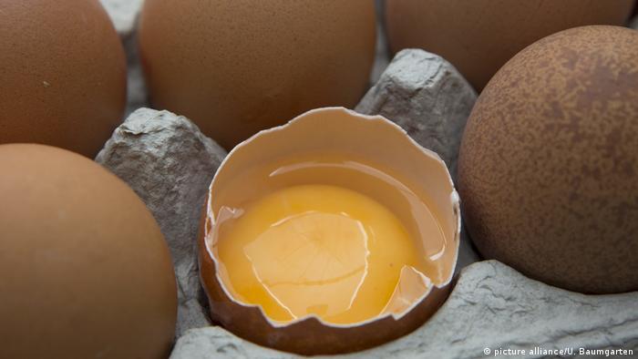 Encuentran otras dos toneladas de huevo contaminado en Dinamarca — AMPLIACION