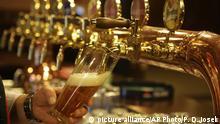 Bier - Lager