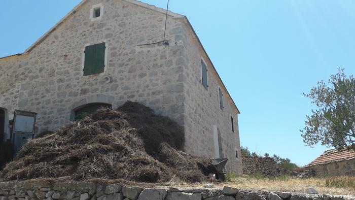 Kroatien Insel Hvar Lavendeldestilerie in Ort Velo Grablje