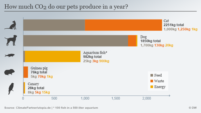 Infografik CO2 Haustiere ENG