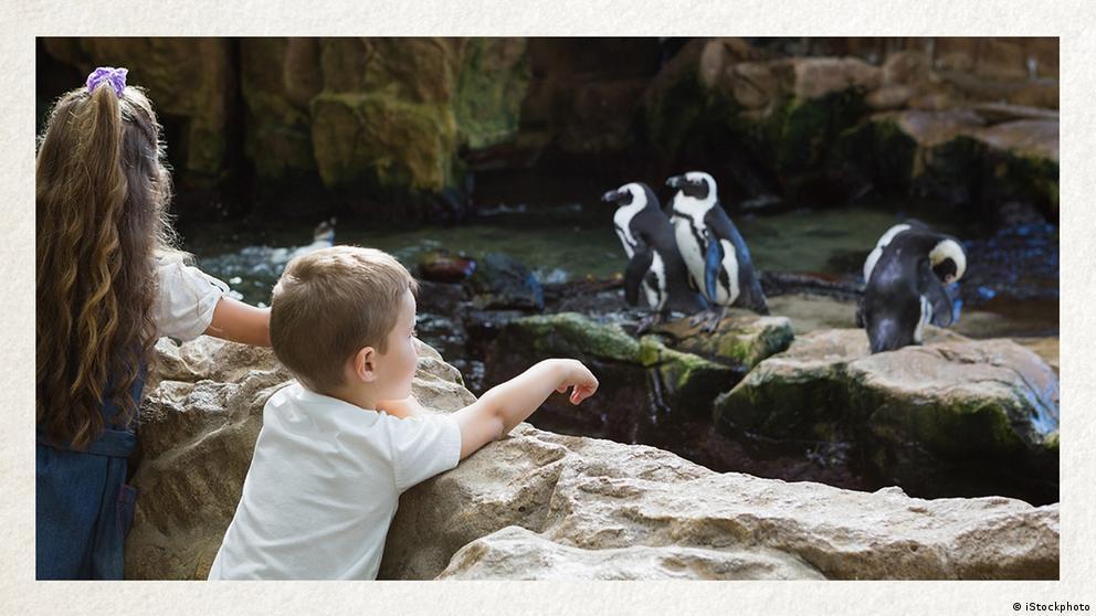 Deutschkurse   Wortschatz   WBS_Foto_Zoo