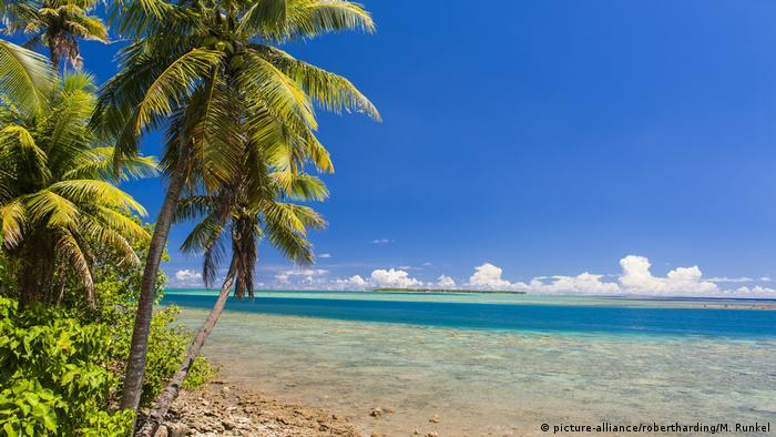 Palm trees on one of Guam's beaches (picture-alliance/robertharding/M. Runkel)