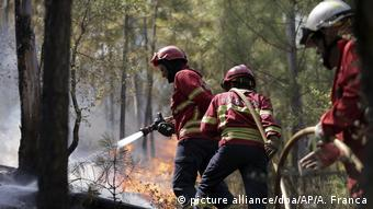 Firefighters control a wild fire approaching the village of Pucarica, near Abrantes, central Portugal (picture alliance/dpa/AP/A. Franca)