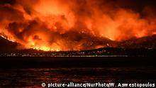 Massive wildfire with multiple front burning houses at Kalamos Attika (picture-alliance/NurPhoto/W. Aswestopoulos)