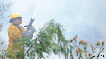 Feuerwehrleute kämpfen gegen die Flammen (Quelle: AP)