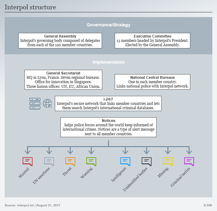 Infographic showing Interpol's structure