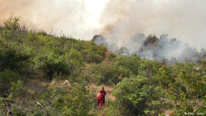 Bosnien und Herzegowina Waldbrände in Čapljina (DW/V. Soldo)