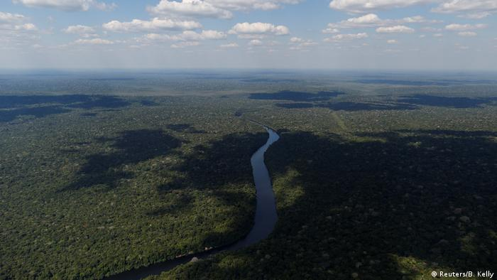De los 26 estados de Brasil, Amazonas es el más grande. Está situado en el noroeste del país y está compuesto principalmente por bosques y aguas. La selva tropical más grande del mundo está creciendo aquí. ¿Pero por cuánto tiempo más?