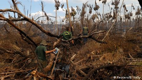 El área forestal de casi 3.000 kilómetros cuadrados, que fue destruida entre agosto de 2016 y julio de 2017, corresponde aproximadamente a la extensión de Luxemburgo. Los ambientalistas habían advertido de la medida de deforestación dispuesta por el Gobierno de Temer, ya que hay reservas naturales y tierras indígenas en dicha región.