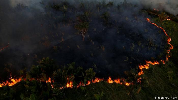 Brazilian Amazon rainforest burning