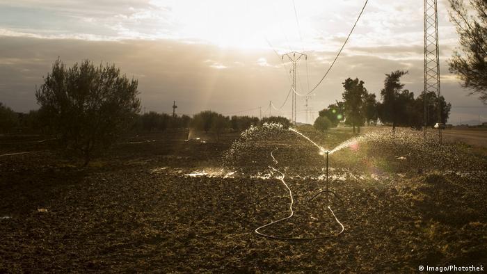 Tunesien Bewässerung in der Landwirtschaft im Raum Kairouan (Imago/Photothek)