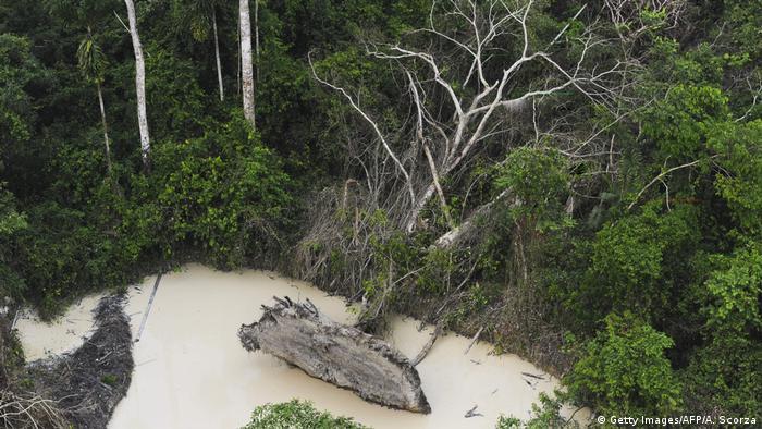 Brasilien Zerstörung der Amazonas Symbolbild (Getty Images/AFP/A. Scorza)