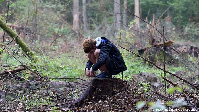 Protest against deforestation in Bialowieza: a boy on a fallen tree (Getty Images/AFP/J. Skarzynski)