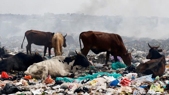 6. Bildergalerie Kenia Mülldeponie bei Nairobi (Reuters/T. Mukoya)