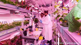 EDEN ISS Future Exploration Greenhouse