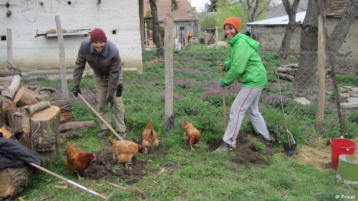 Sele i Srđan na volontiranju u Mađarskoj