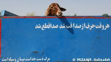 Iran KW35 Opferfest