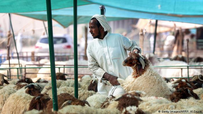 Opferfest (Getty Images/AFP/Y. Al-Zayya)