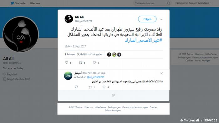 08f6a6096 العلاقات السعودية الإيرانية.. ذوبان جليد أم ″محاولات تلطيف″؟ | سياسة ...