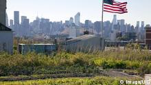 New York'daki Brooklyn Grange. FOTO: Imago/UIG.