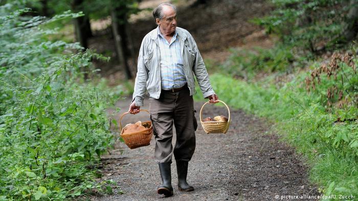 Георг Зимрок - редкий пример немецкого грибника