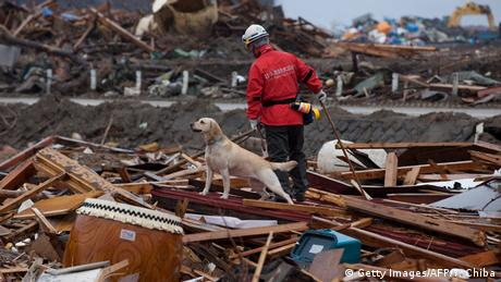 A rescue worker and his rescue survey the destruction after the 2011 Japanese earthquake and tsunami (Getty Images/AFP/Y. Chiba)