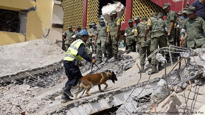 Equipes de resgate usam cães para procurar sobreviventes entre escombros em Juchitan