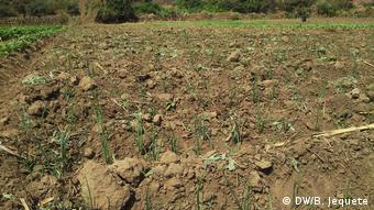 Mosambik - Dürre - Acker