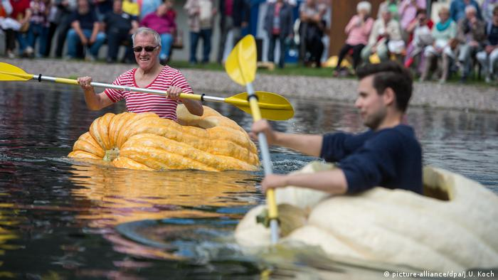People paddling pumpkins